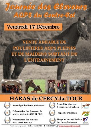 pub_cercy_poulinieres_20101217