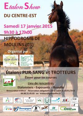 201501 AfficheSalonMoulins