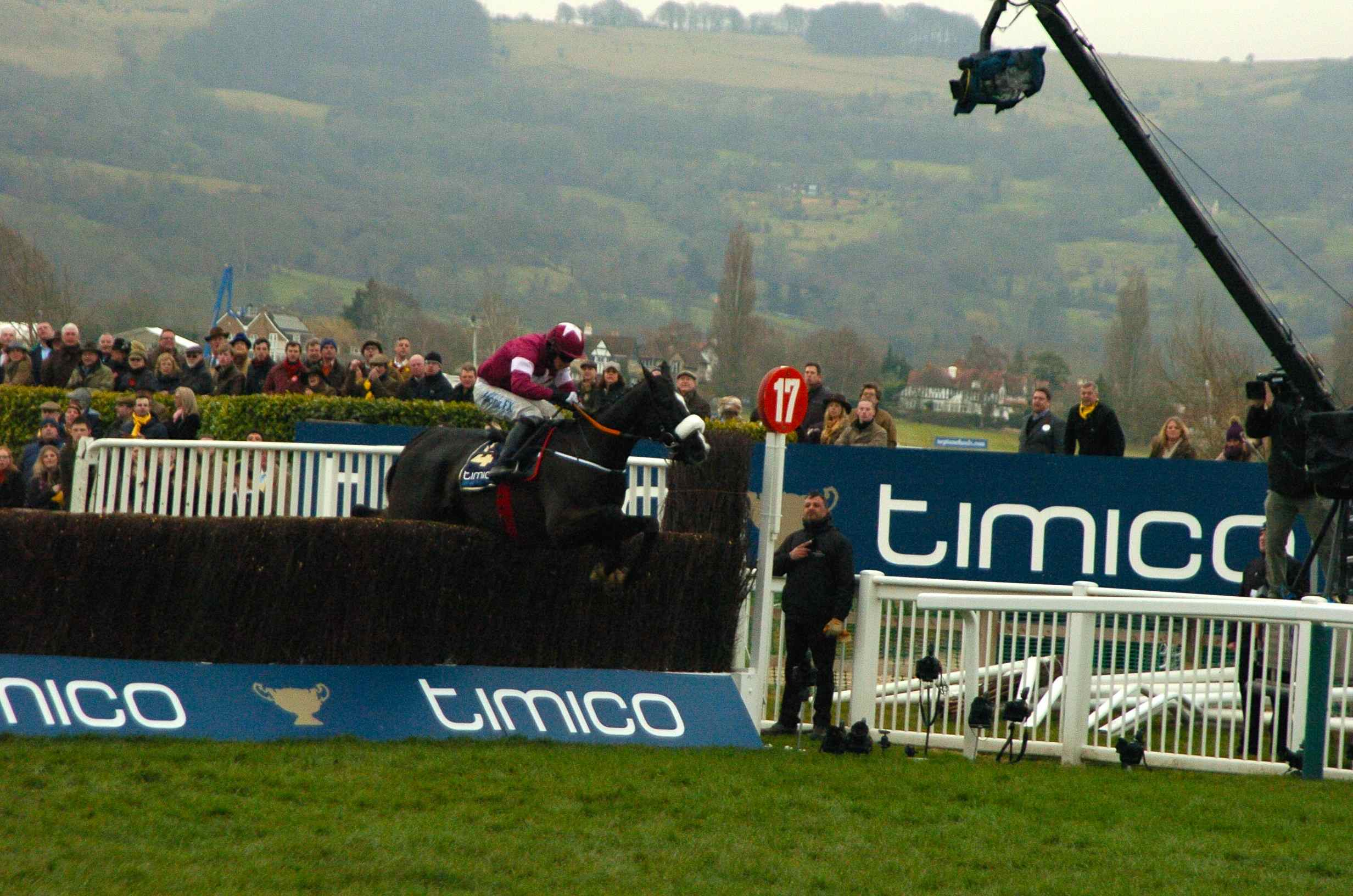 DSC_8635 GOLD CUP 2016 DON COSSACK