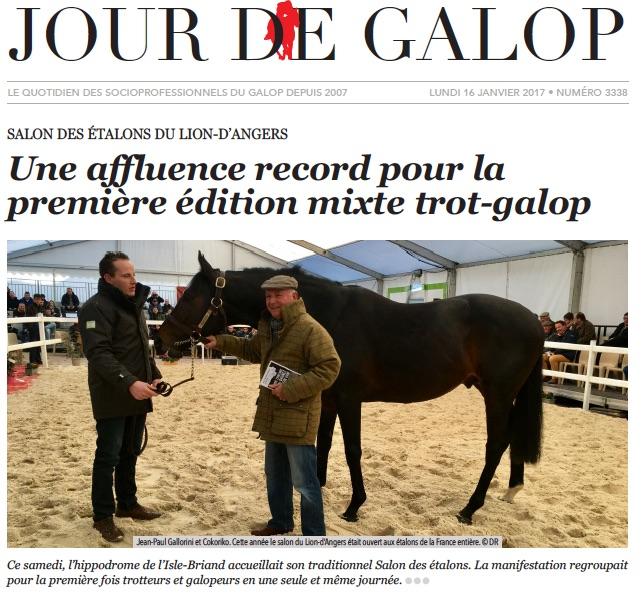 Salon des Etalons du Lion d'Angers