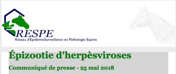 RESPE – Herpèsviroses – Communiqué du 25 mai 2018