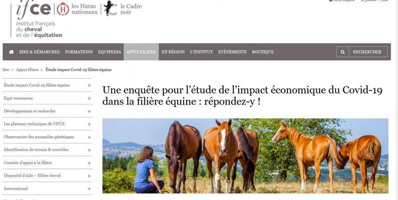 Enquête Filière équine pour l'étude de l'impact économique du Covid-19 : répondez-y !